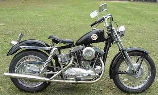 tjsfish56's 1957 Sportster XL